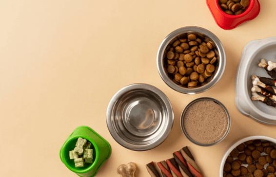 Alimentacion-perros-pienso-la-banera-de-eva-santander
